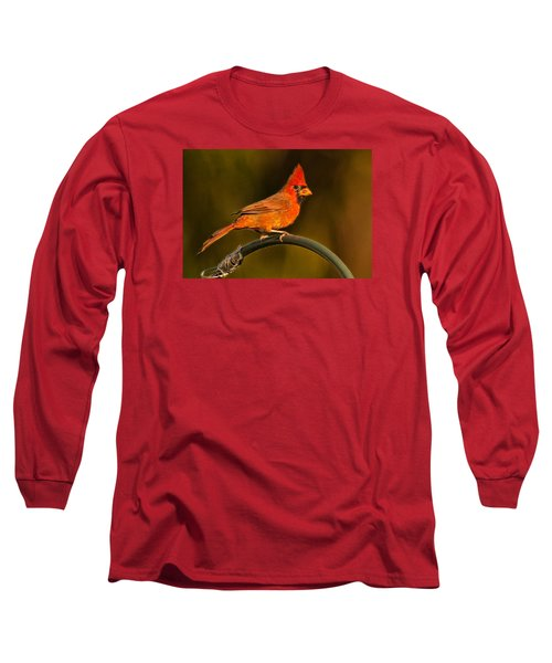 Long Sleeve T-Shirt featuring the photograph The Cardinal by Don Durfee