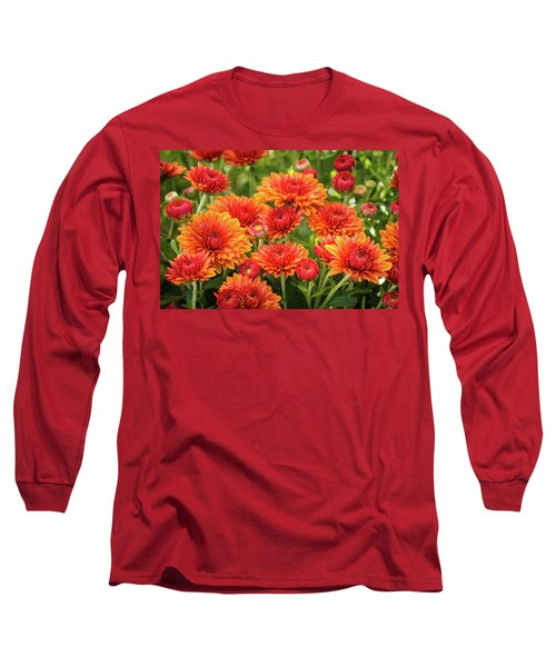 Long Sleeve T-Shirt featuring the photograph The Fall Bloom by Bill Pevlor