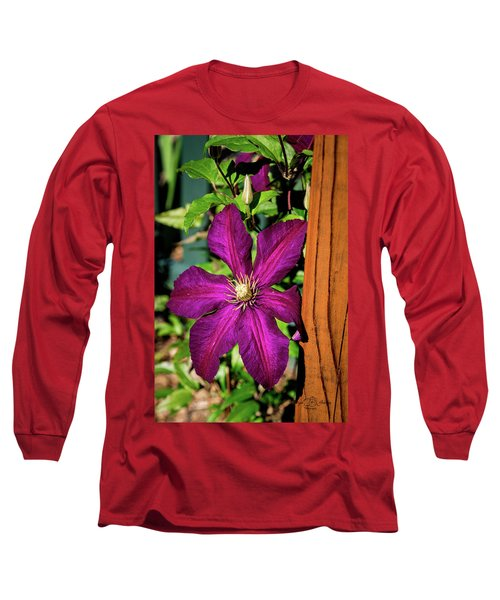 The Garden Wall Long Sleeve T-Shirt