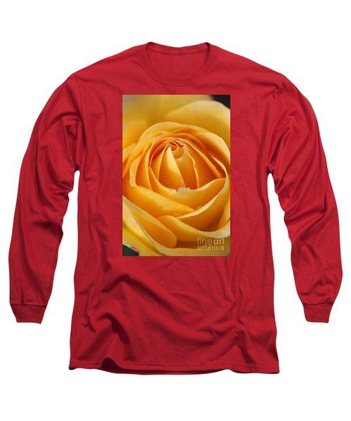 The Yellow Rose Long Sleeve T-Shirt by Joy Watson
