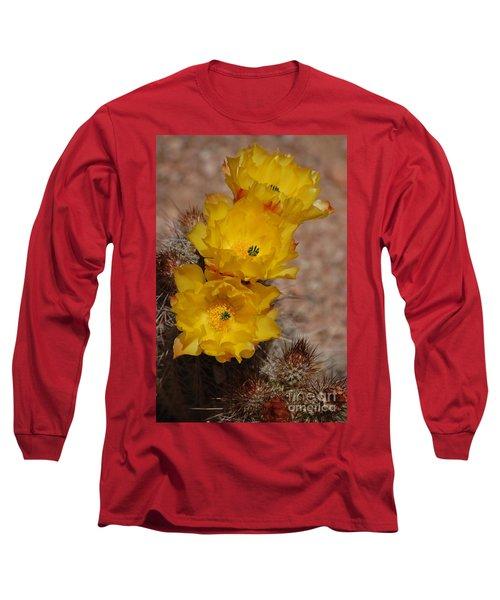 Three Yellow Cactus Flowers Long Sleeve T-Shirt