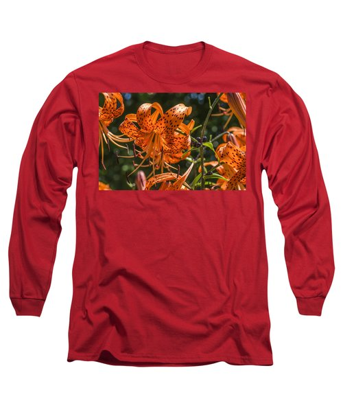 Tiger Lilies In The Sun Long Sleeve T-Shirt