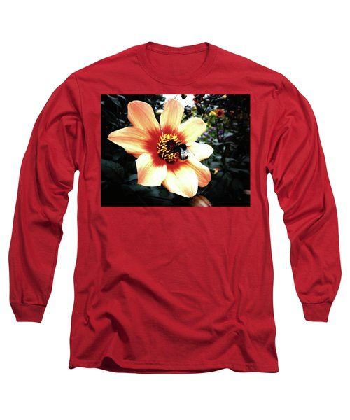 Translucent Wings Long Sleeve T-Shirt