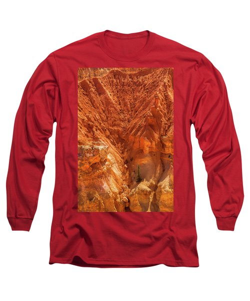 Tree In Bryce Long Sleeve T-Shirt