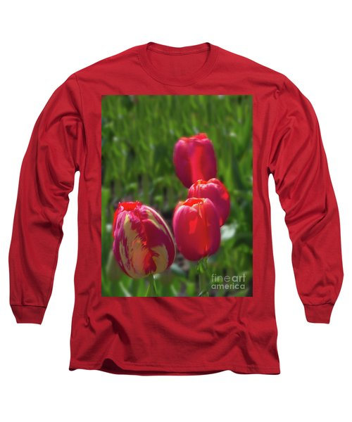 Tulip Quad Aglow Long Sleeve T-Shirt by Ansel Price