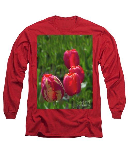 Tulip Quad Aglow Long Sleeve T-Shirt