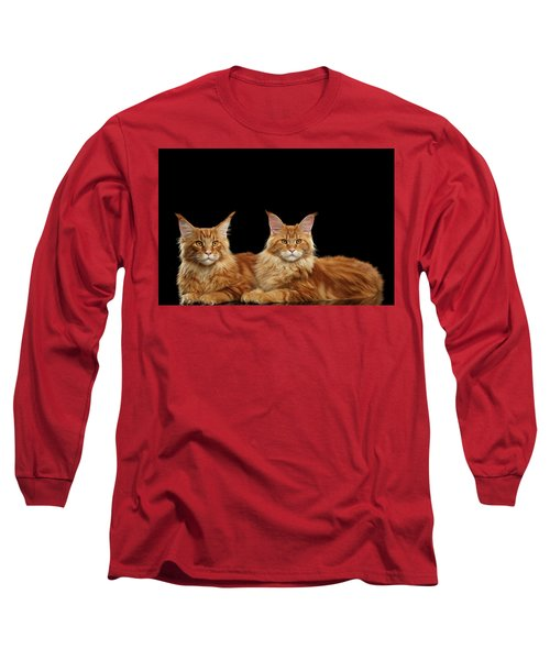 Two Ginger Maine Coon Cat On Black Long Sleeve T-Shirt