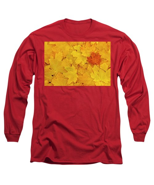 Long Sleeve T-Shirt featuring the photograph Understory by Tony Beck