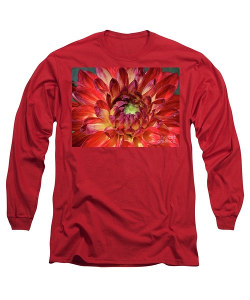 Veriegated Dahlia Beauty Long Sleeve T-Shirt by Debby Pueschel