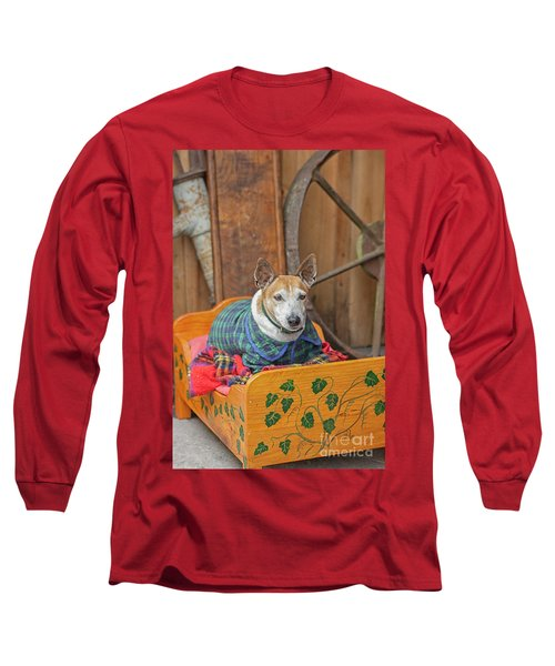 Long Sleeve T-Shirt featuring the photograph Very Old Pet Dog In Clothes On Own Bed by Patricia Hofmeester