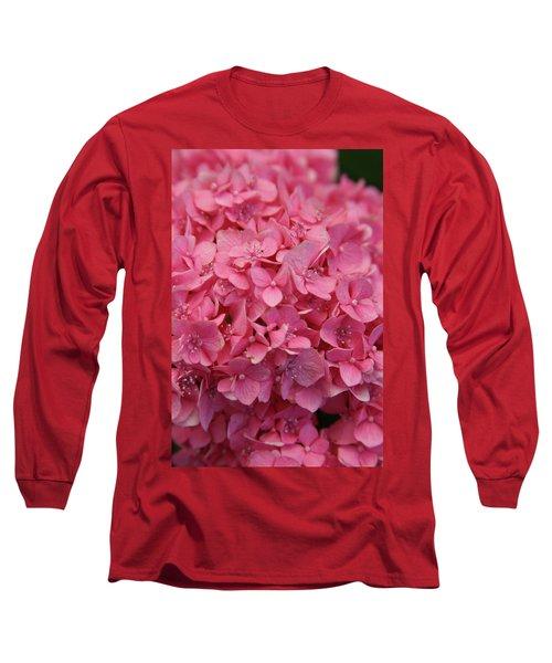 Very Pink Hydrangea Blossoms 2578 H_2 Long Sleeve T-Shirt