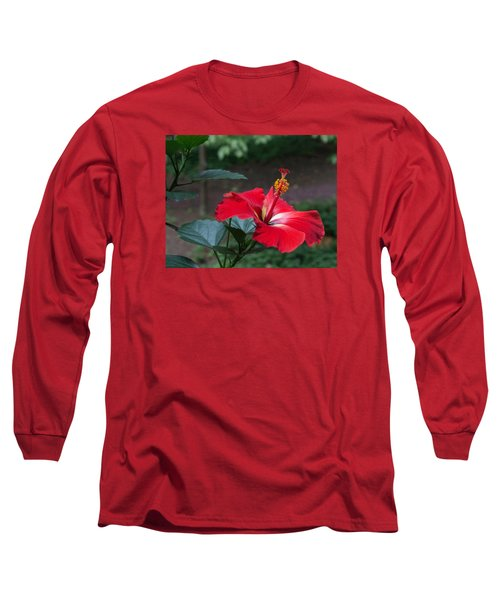 Vivid Hibiscus Long Sleeve T-Shirt by Arlene Carmel