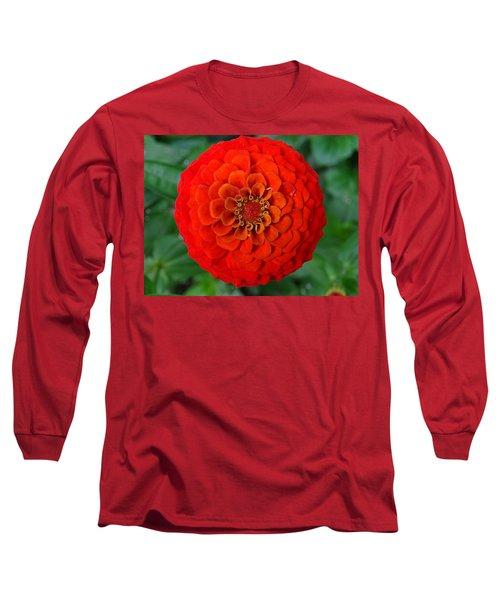 Want An Orange ? Long Sleeve T-Shirt