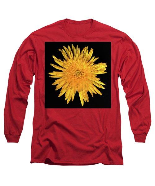 Yellow Flower Macro Long Sleeve T-Shirt