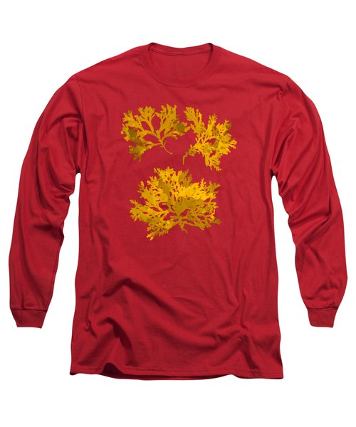 Long Sleeve T-Shirt featuring the mixed media Yellow Gold Seaweed Art Delesseria Alata by Christina Rollo