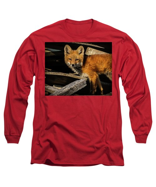 Young Fox In The Wood Long Sleeve T-Shirt