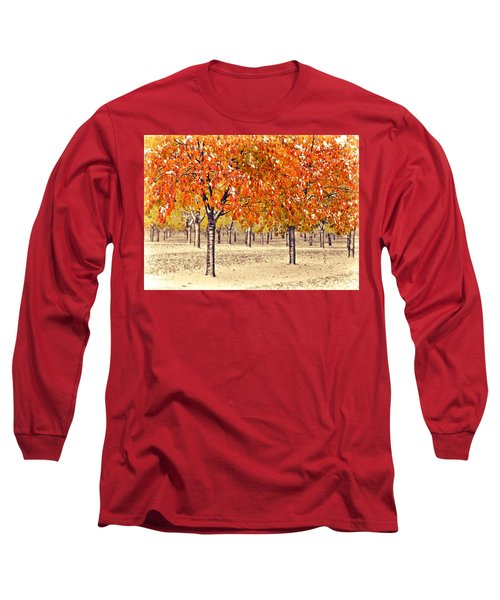A Touch Of Winter Long Sleeve T-Shirt