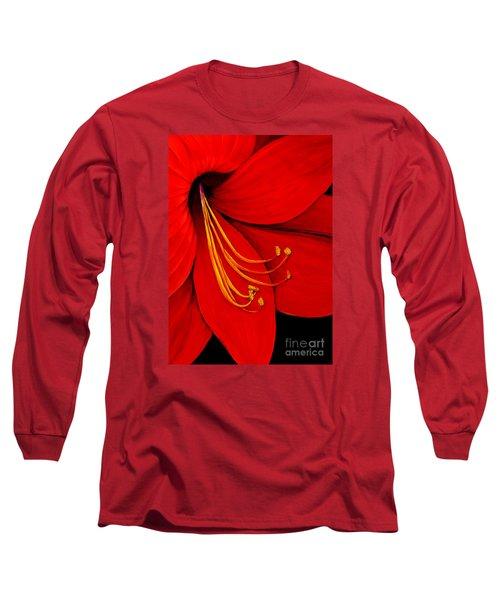 Amaryllis 2 Long Sleeve T-Shirt