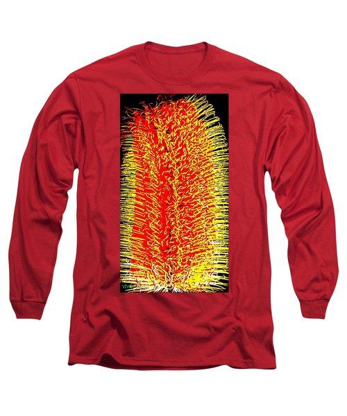 Bottlebrush  Dreaming Long Sleeve T-Shirt