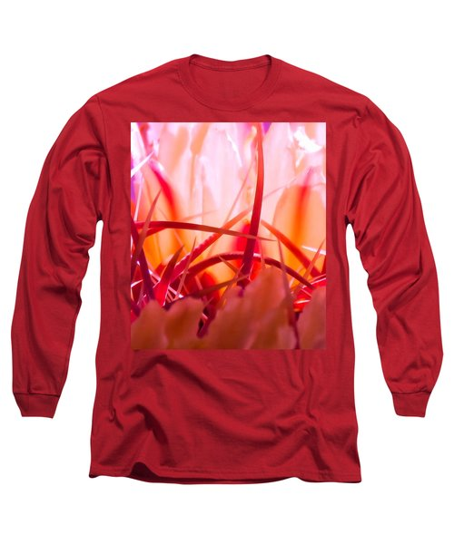 Cactus Cathedral Long Sleeve T-Shirt