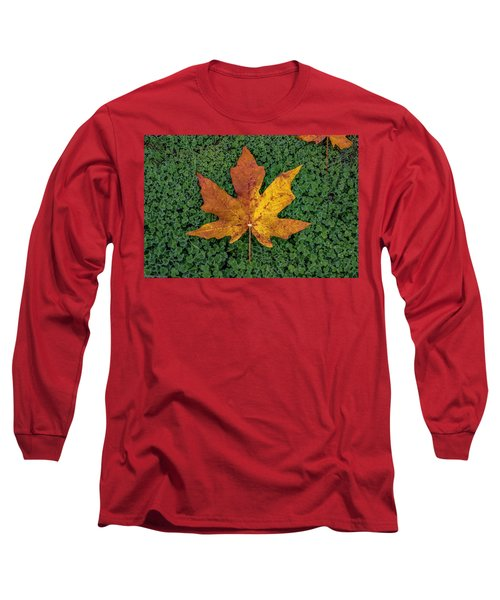 Clover Leaf Autumn Long Sleeve T-Shirt