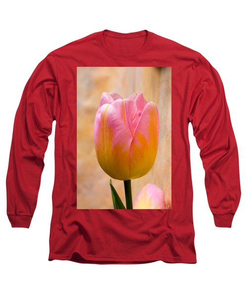Colorful Tulip Long Sleeve T-Shirt