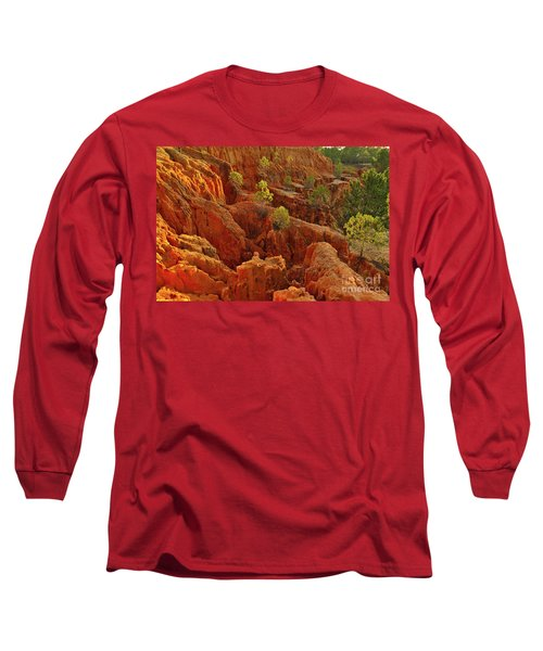 Little Pine Trees Growing On The Valley Cliffs Long Sleeve T-Shirt