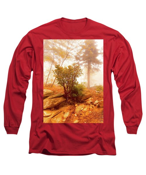 Manzanita In Light Long Sleeve T-Shirt