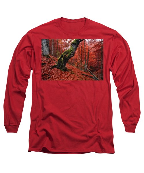 Old Beech Tree Long Sleeve T-Shirt
