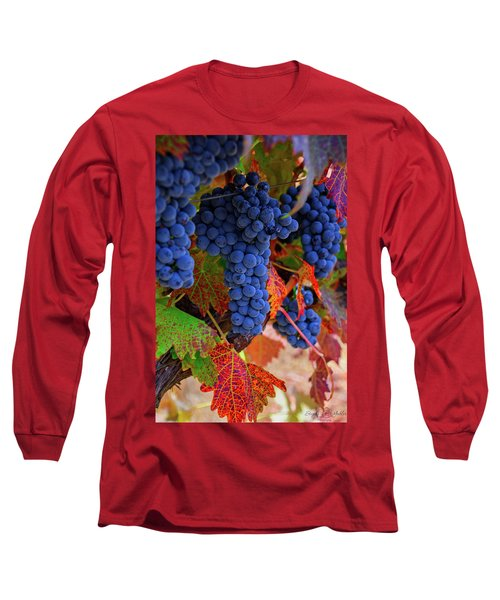 On The Vine II Long Sleeve T-Shirt