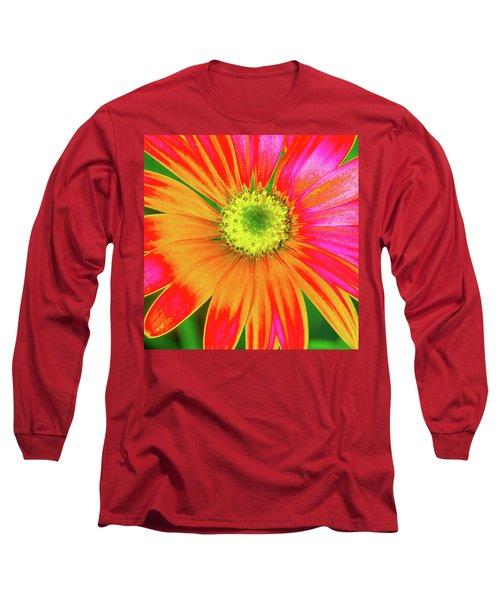 Pop Art Osteospermum 2 Long Sleeve T-Shirt