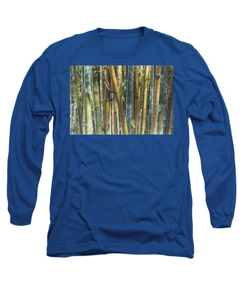 All The Colors Of The Bamboo Rainbow Long Sleeve T-Shirt
