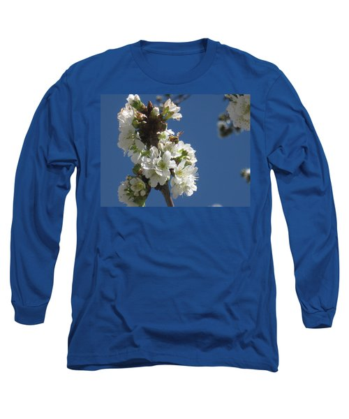 Bee On Cherry Blossoms Long Sleeve T-Shirt