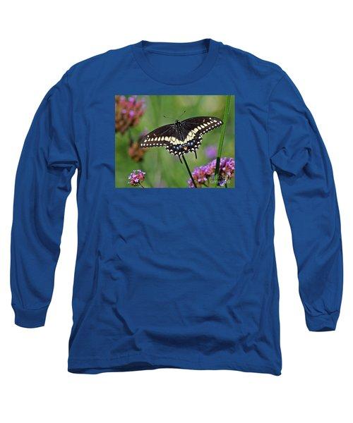 Black Swallowtail Butterfly  Long Sleeve T-Shirt