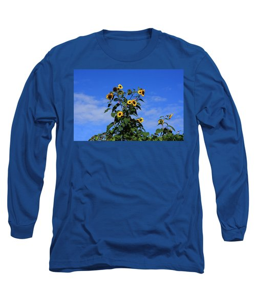 Bunch Of Sunflowers Long Sleeve T-Shirt