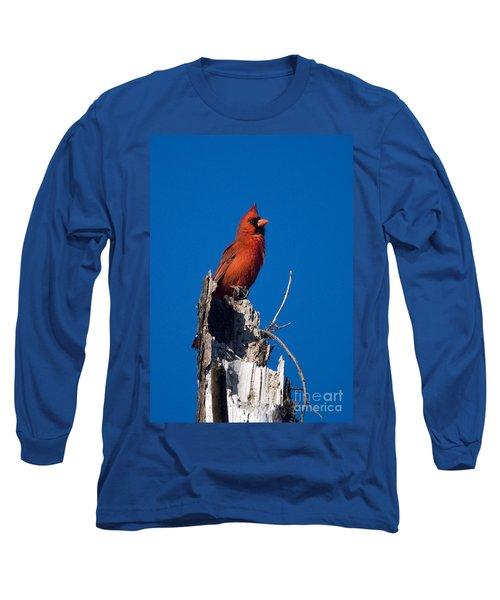 Cardinal On Honeymoon Island Long Sleeve T-Shirt