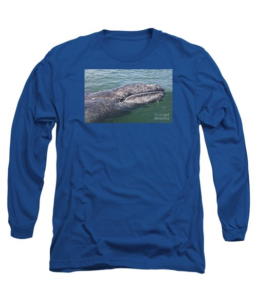 Gray / Grey Whale Eschrichtius Robustus Long Sleeve T-Shirt by Liz Leyden