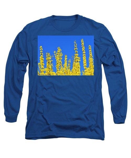 Lighting The Spring Sky Long Sleeve T-Shirt by Felicia Tica