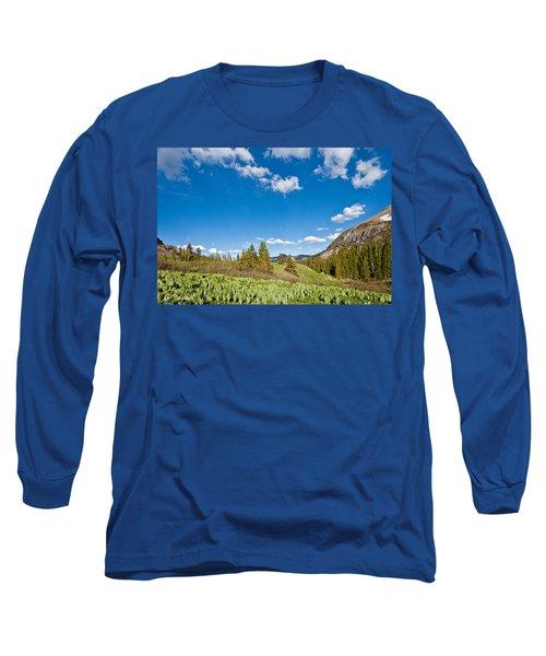 Meadow Of False Hellebore Long Sleeve T-Shirt by Jeff Goulden