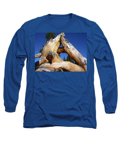 Nature's Triangle Long Sleeve T-Shirt