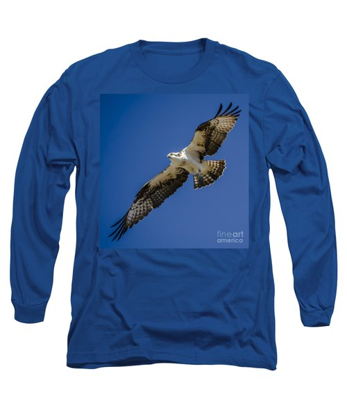 Osprey In Flight Long Sleeve T-Shirt by Dale Powell