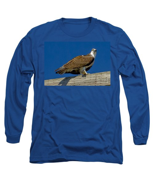 Osprey With Fish In Talons Long Sleeve T-Shirt by Dale Powell