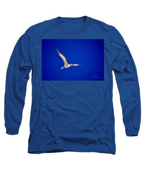 Royal Tern 2 Long Sleeve T-Shirt