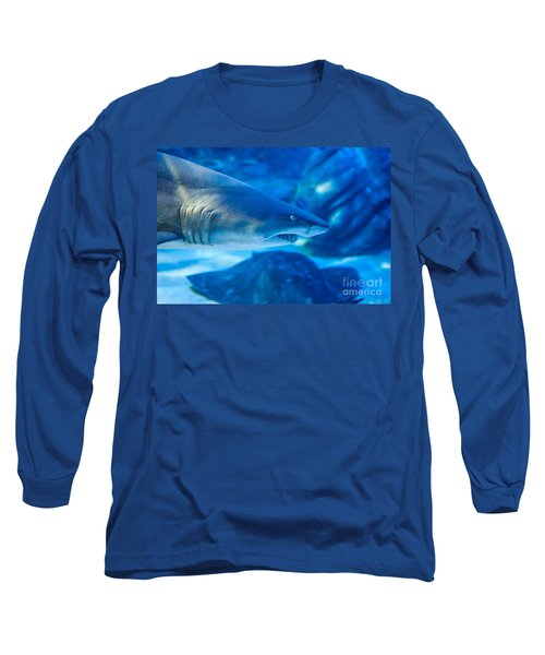 Shark Long Sleeve T-Shirt by Ray Warren