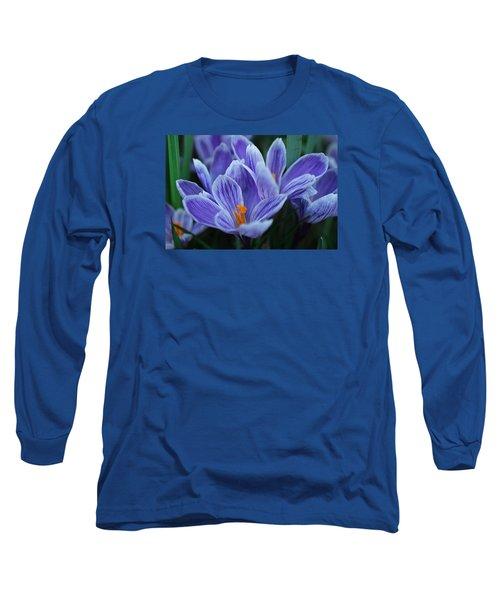 Spring Crocus Long Sleeve T-Shirt by Julie Andel