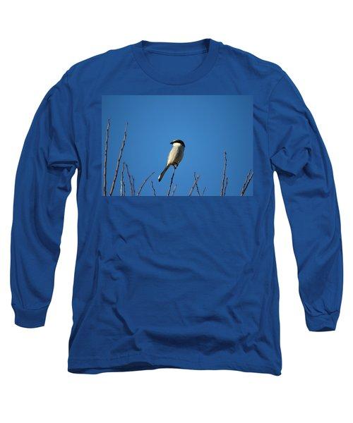 The Predator Lookout Shrike Bird Art Long Sleeve T-Shirt