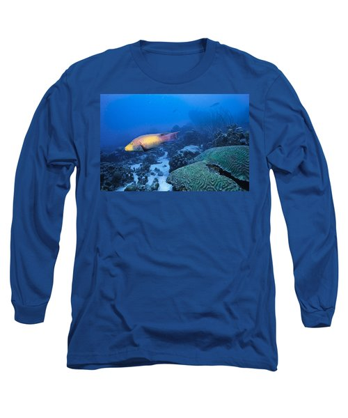The Spanish Hog Snapper Long Sleeve T-Shirt