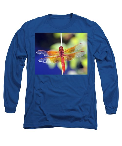 Wounded Warrior Long Sleeve T-Shirt by Shoal Hollingsworth