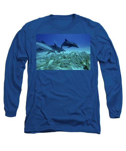 Atlantic Spotted Dolphin Stenella Long Sleeve T-Shirt