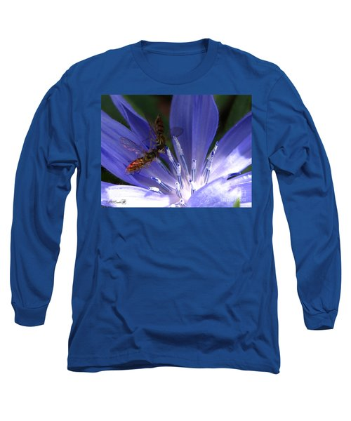 A Quiet Moment On The Chicory Long Sleeve T-Shirt by J McCombie